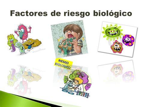 imagenes de vectores biologicos factores de riesgo biol 243 gico ppt descargar