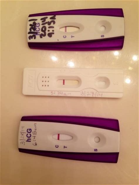 faint positives   negative pregnancy test page
