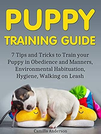 how to your tricks and obedience puppy guide 7 tips and tricks to your puppy in obedience and manners