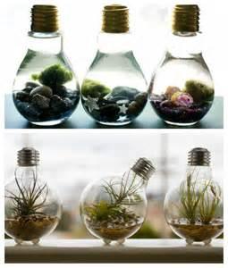 Plants In Water Vase Diy Light Bulb Ideas Diy Decorator