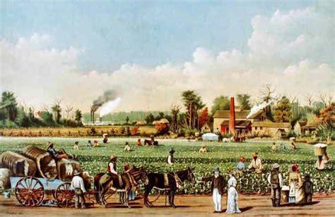 cotton plantations