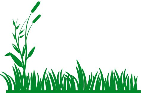 grass clipart free grass background clip at clker vector clip