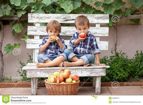 the backyard boys two boys eating apples stock photography image 36980672