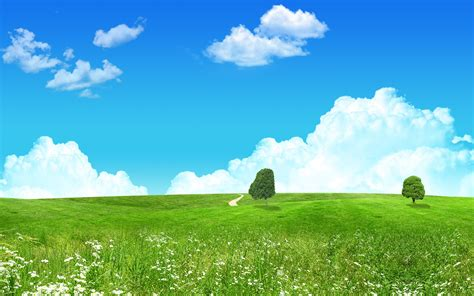 lovely green landscape wallpapers hd wallpapers id