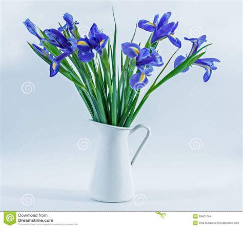 Irises In Vase irises in a vase stock images image 29401064