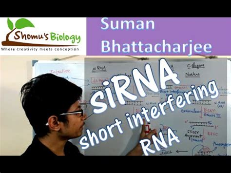 download mp3 virzha sirna related video