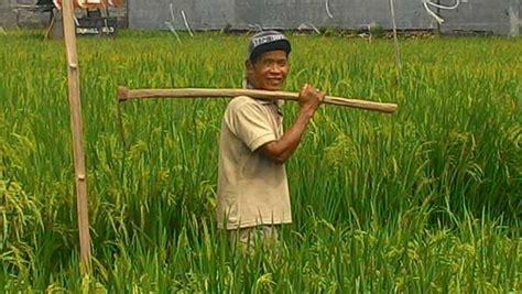 Pancing Murah Di Bali sewa rumah villa murah di pemogan taman pancing denpasar