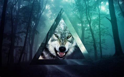 themes tumblr wolf tumblr wolf wallpaper hd http imashon com w tumblr