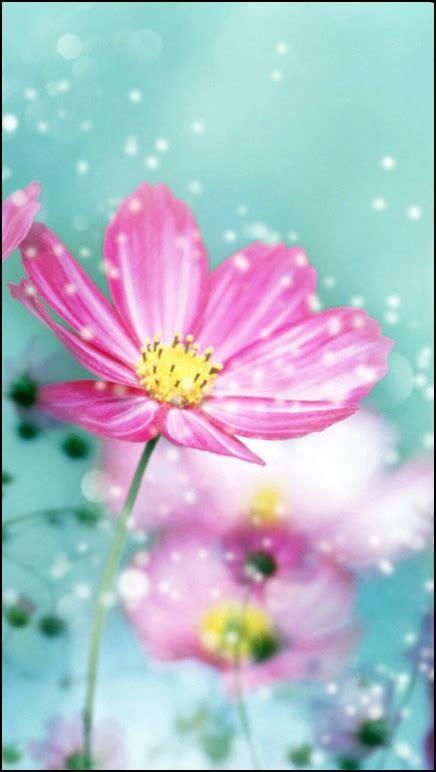 imagenes para celular flores fondos para celular de flores fondos pinterest fondo