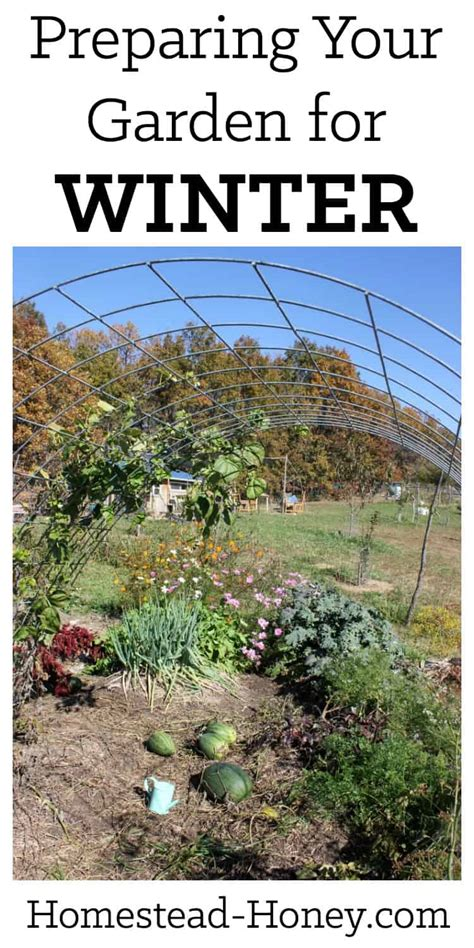preparing your garden for winter homestead honey