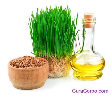 lade a olio fai da te olio di germe di grano benefici per la bellezza