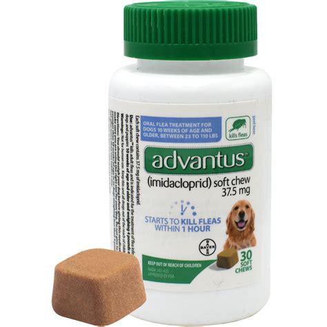 flea chews for dogs advantus flea soft chews for large dogs 30 count