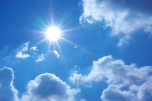 antioxidantes y nutrientes que protegen la piel sol