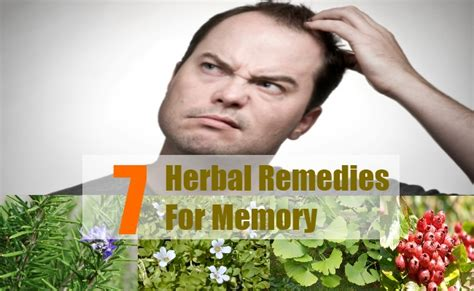 top 7 herbal remedies for memory ways to improve