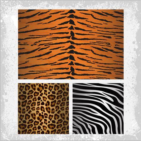 adobe illustrator zebra pattern tiger zebra leopards skin pattern free vector in adobe