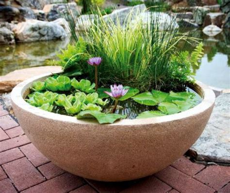 Indoor Water Garden Kits by Patio Ponds Container Water Gardens From Aquascape 174