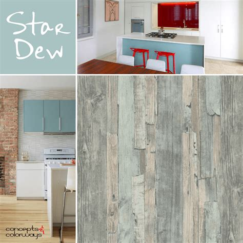 Red Kitchen Design Ideas sherwin williams stardew concepts and colorways
