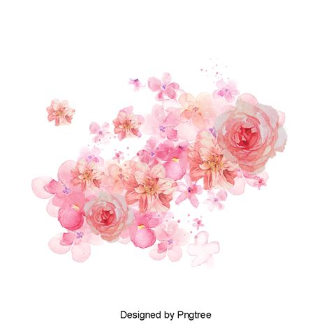 Ducky One Transparent Pink watercolor flowers shading pink flowers watercolor