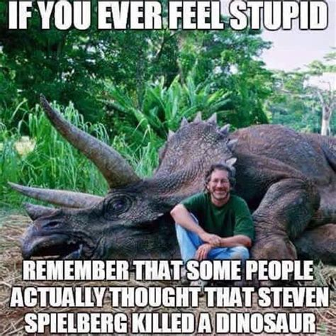 Memes About Stupid People - if you ever feel stupid remember this lmao meme snarky