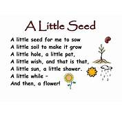 Themed Poems  Seeds And Plants By KCOATES Teaching