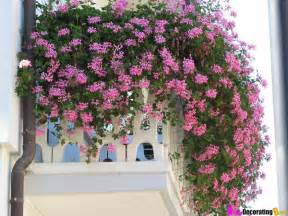 Flowers For Balcony Garden Diy Friday How To Build A City Garden On Your Balcony