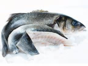 whole sea bass online whole sea bass buy fish fish delivery from the fish society
