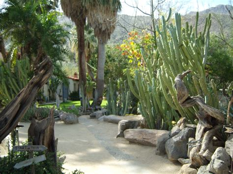 Moorten Botanical Garden In Palm Springs Ca Palm Springs Botanical Garden