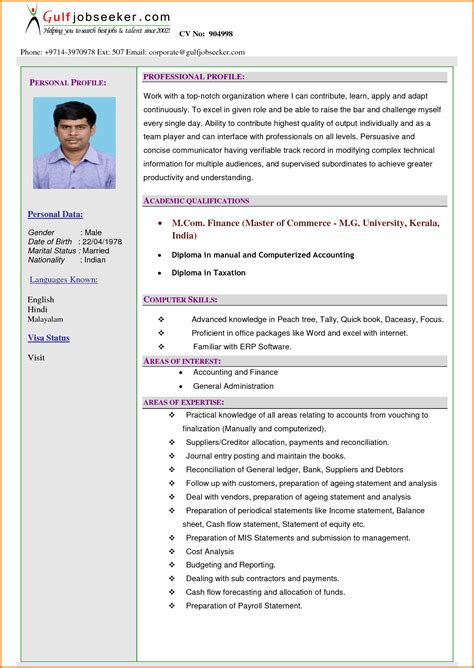 resume profile statement exle