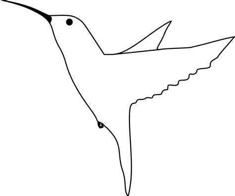 Hummingbird Outline by Big Image Png