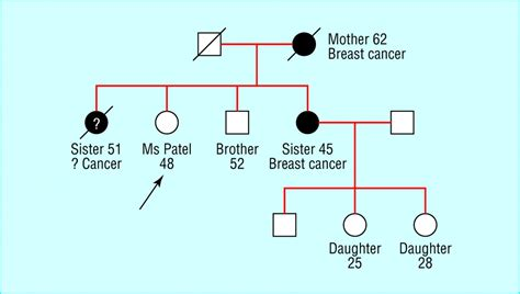 three generation genogram cake ideas and designs