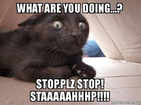 What You Doing Meme - what are you doing stop plz stop staaaaahhhp