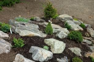 Miniature Rock Garden Farm News And Miniature Conifers