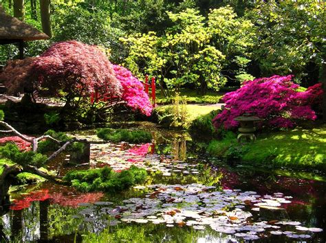 japanese zen garden japanese zen garden japanese garden the hague
