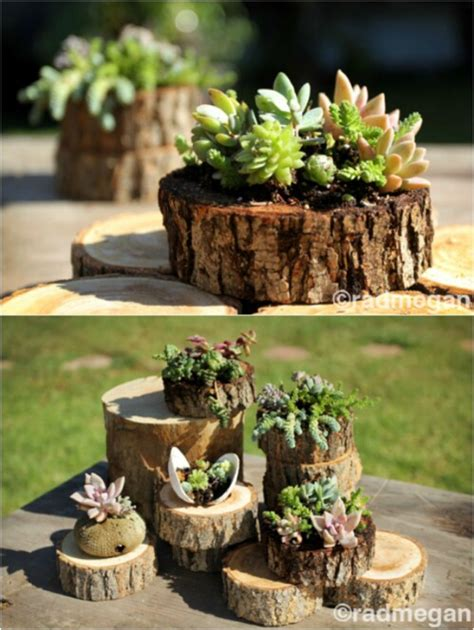 what to do with plant stump as christmas decoration outdoors 20 amazing flower planters and lawn ornaments made out of tree stumps diy crafts