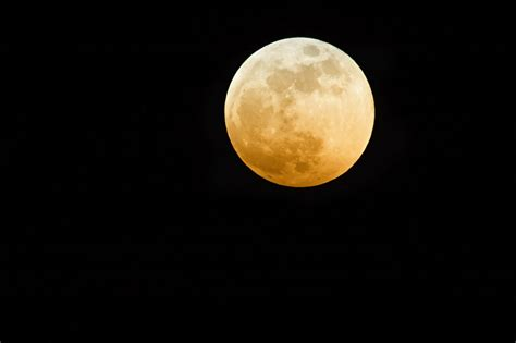 moon what s in a name photograph by barbara griffin the harvest moon is tonight fortune