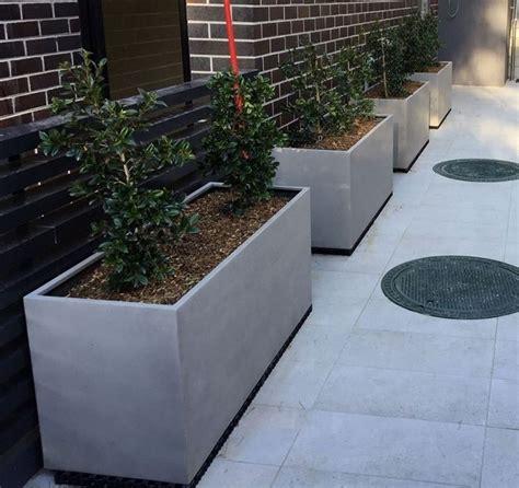 vasi di cemento fioriere in cemento moderne fioriere fioriere in cemento 6