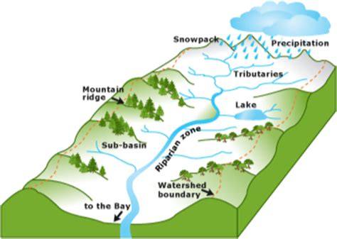 watershed analysis what how factors and applications