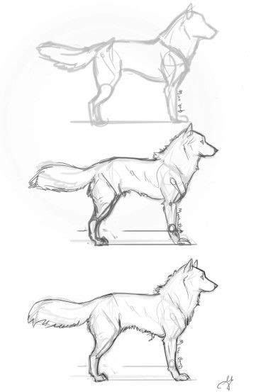 werewolf man tutorial 78 best images about how to draw anime manga on pinterest