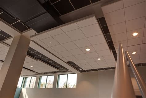 Ceiling Building Materials by Acoustic Ceilings Building Materials