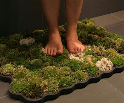 Moss Shower Mats Live Off The Water That Drips Off Of You Moss Rug For Bathroom