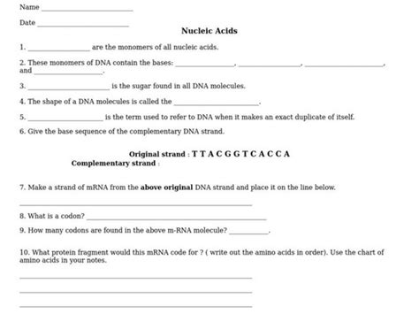 Nucleic Acids Worksheet Answers by Nucleic Acids Worksheet Answers Deployday