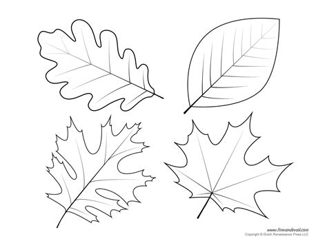 Leaf Print Out Template by New Leaf Print Out Template 3 482