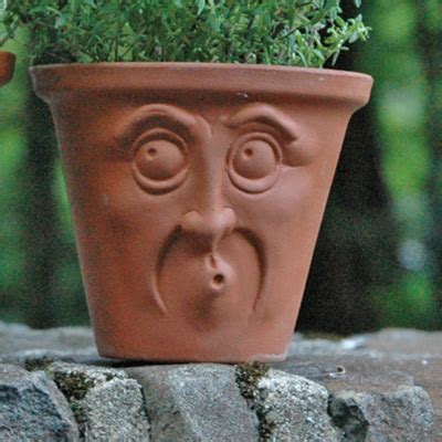 flower pots with faces on them herb pots pots with faces english terracotta pots