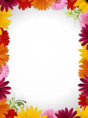 search photos quot flower border quot