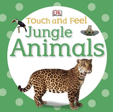 my touch and feel picture cards animals my 1st t f picture cards books touch and feel jungle animals touch feel 11street