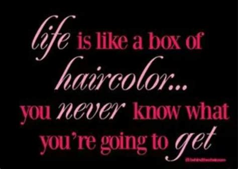 color humor box color salon humor salon humor salon humor
