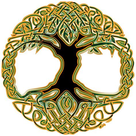 symbolism trees images for gt celtic symbols and meanings tree of