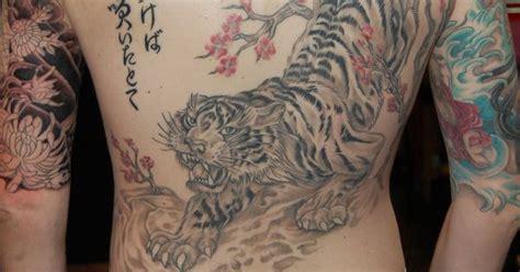 tiger tattoo edmonton love the tiger and cherry blossom tattoos pinterest