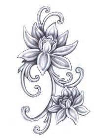 Lotus Flower Drawings Viola S Lotus Flower By On Deviantart