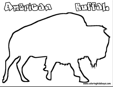 coloring pages buffalo coloring pages pictures